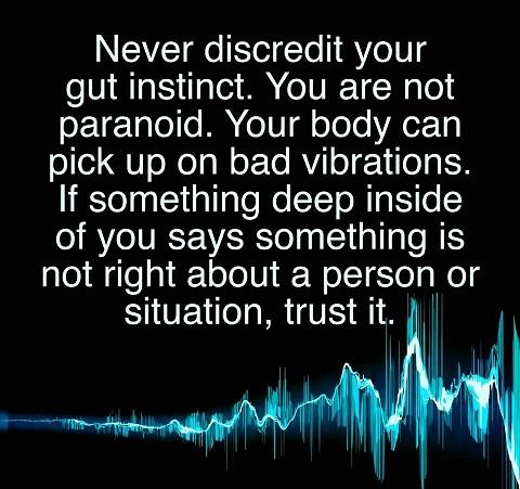 gut-instinct