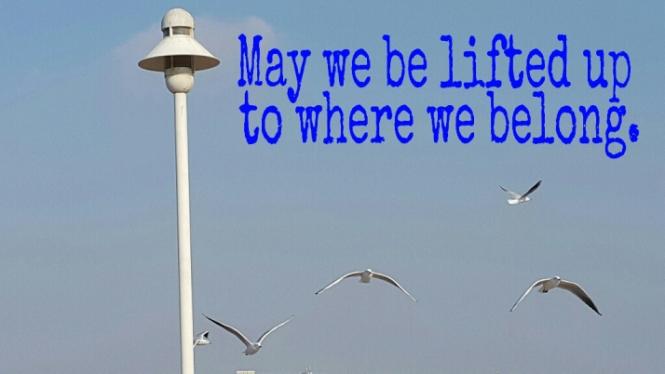 Where we belong, Inspiration, Life, Adventure, Transformation