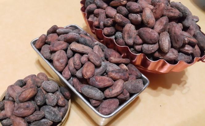 Dame Cacao 01